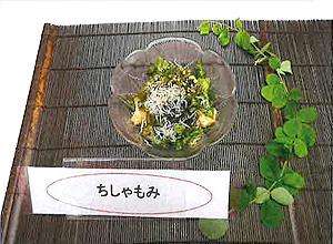 展示料理07